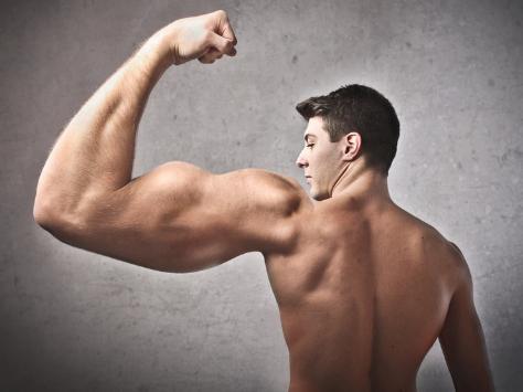 Descubren cómo volverse musculoso sin ningún esfuerzo (03/Sep/2012)
